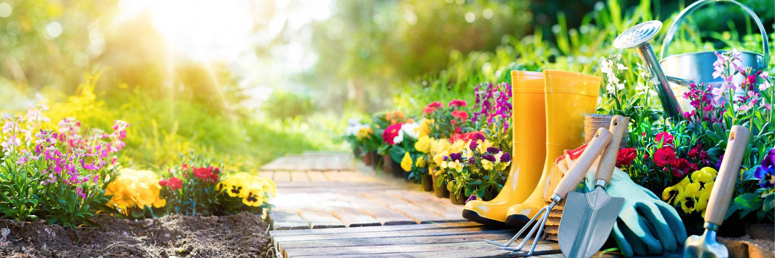 庭づくりの情報満載ブログ